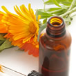 Dia da Homeopatia Mensagens e Recados