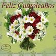 Feliz Aniversário em Espanhol Mensagens e Frases