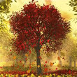 Início do Outono Mensagens e Recados
