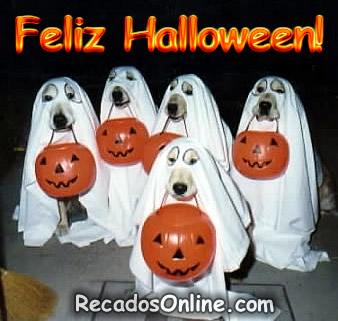 Halloween Engraçado Imagem 9