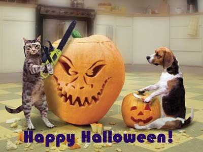 Halloween Engraçado Imagem 5