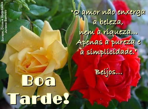 Boa Tarde Amor Imagem 2