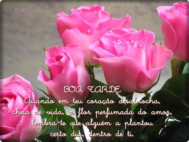 Boa Tarde Amor Imagem 4