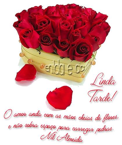 Boa Tarde Amor Imagem 6