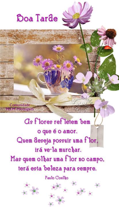 Boa Tarde Amor Imagem 7