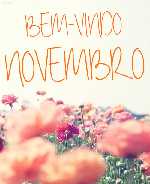 Bem-vindo, Novembro!