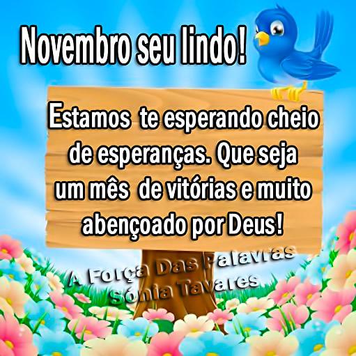 Novembro, seu lindo! Estamos te esperando cheio de esperanças. Que seja um mês de vitórias e muito abençoado por Deus!