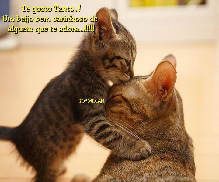Te gosto Tanto! Um beijo bem carinhoso de alguém que te adora.