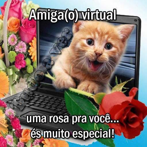 Amizade Virtual Imagem 2