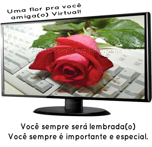 Amizade Virtual imagem 8