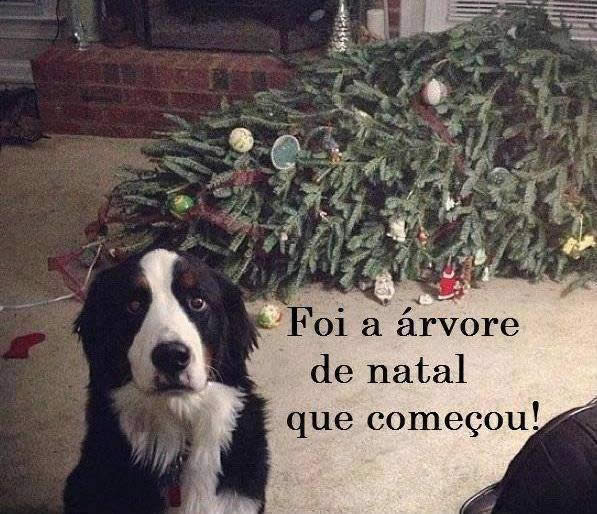 Natal Engraçado imagem 5