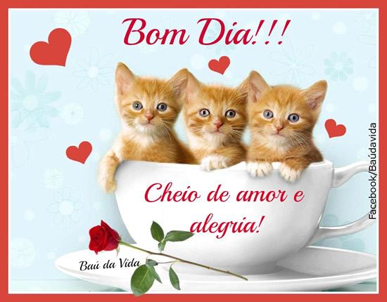 Imagens De Bom Dia: Imagens, Gifs E Mensagens Para Facebook (Página