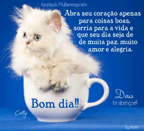 Abra seu coração apenas para coisas boas, sorria para a vida e que seu dia seja de muita paz, muito amor e alegria. Bom dia!!
