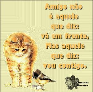 Amizade não é aquele que diz: vá em frente, mas aquele que diz: vou contigo.