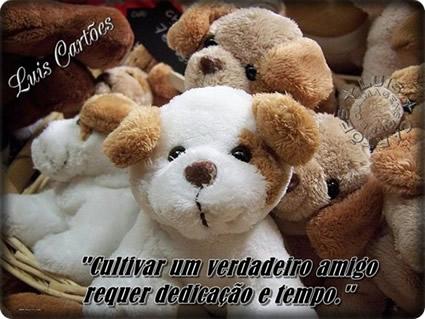 Amizade Verdadeira Imagem 3