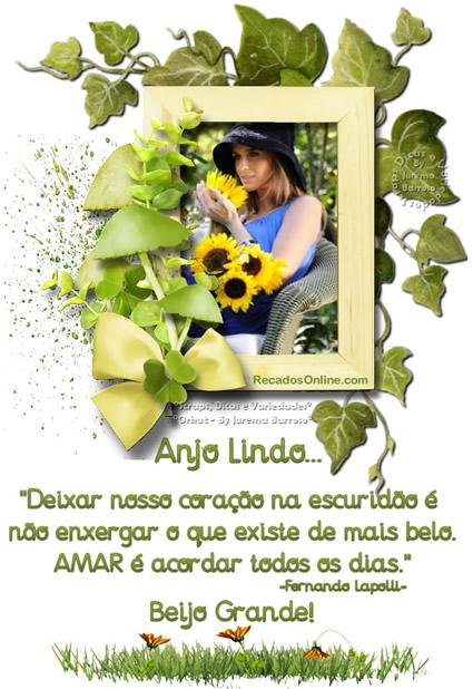 Anjo Amigo imagem 10