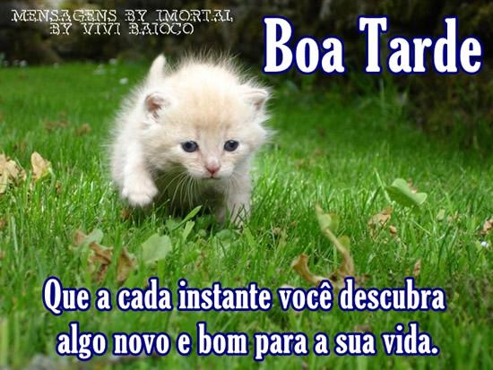 Imagens De Boa Tarde: Imagens E Mensagens Para Facebook (Página 3