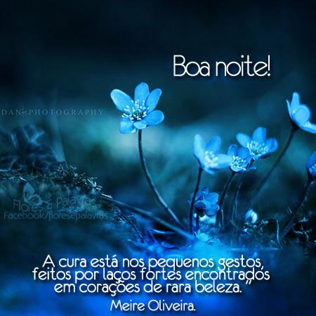 Boa noite! A cura está nos pequenos gestos feitos por laços fortes encontrados em corações de rara beleza. Meire Oliveira.