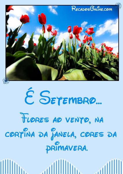 É Setembro... Flores ao...