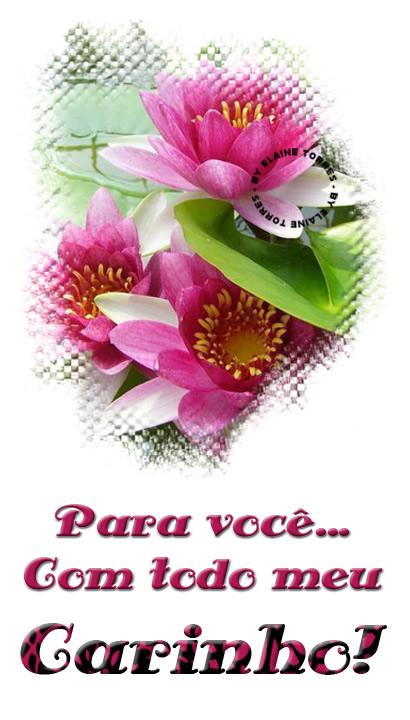 Carinho Imagem 8