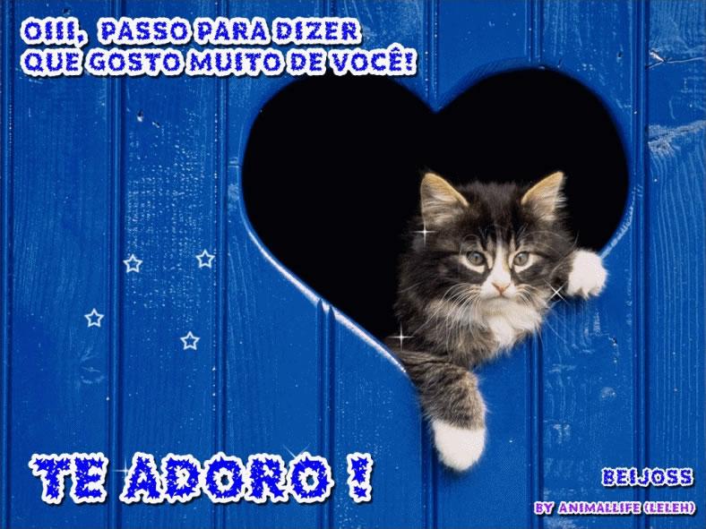 Te Adoro imagem 2