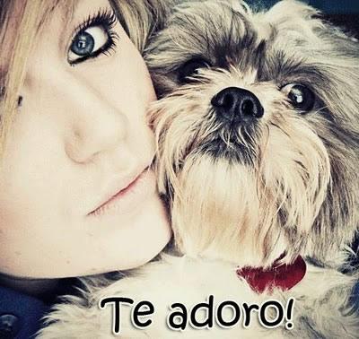 Te Adoro Imagem 3
