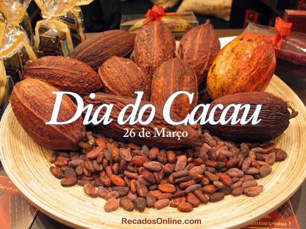 Dia do Cacau e do Chocolate imagem 15