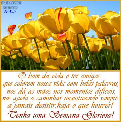O bom da vida é ter amigos que colorem nossa vida com pelas palavras, nos dá as mãos nos momentos difíceis, nos ajuda a caminhar incentivando...