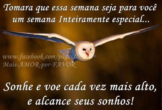Desejo Uma Semana Abençoada A Todos: Imagens E Mensagens Para Facebook (Página 3
