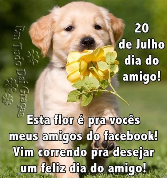20 de Julho, Dia do Amigo! Esta flor é pra vocês, meus amigos do Facebook! Vim correndo pra desejar um Feliz Dia do Amigo!