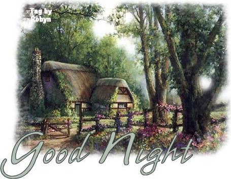 Boa Noite em Inglês Imagem 1