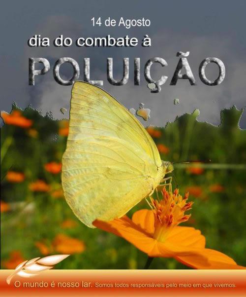 Dia do Combate à Poluição Imagem 3