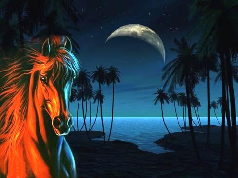 Cavalos Imagem 5