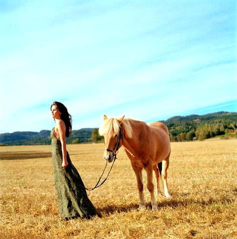 Cavalos Imagem 7