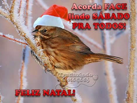 Acorda Face. Lindo sábado pra todos. Feliz Natal!