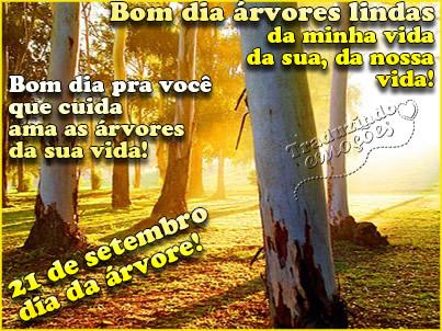 Dia da Árvore Imagem 5