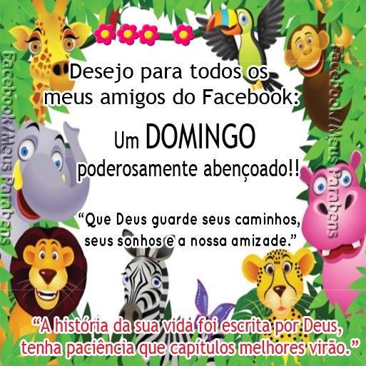 Domingo Imagem 9