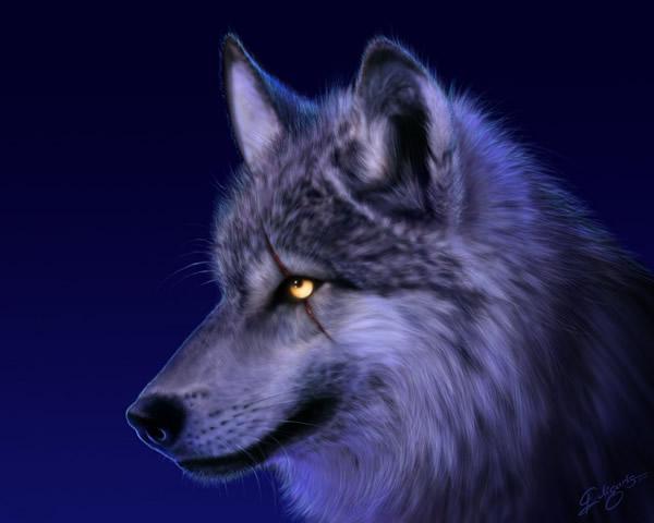 Lobos Imagem 2