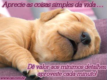 Otimismo Imagem 4
