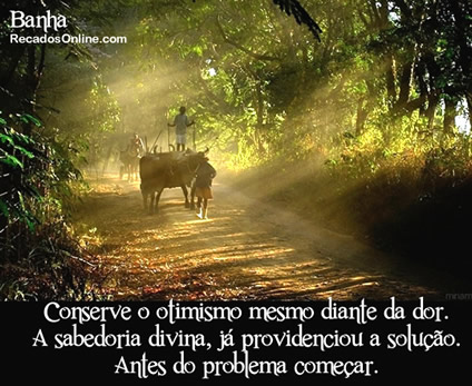 Otimismo Imagem 10