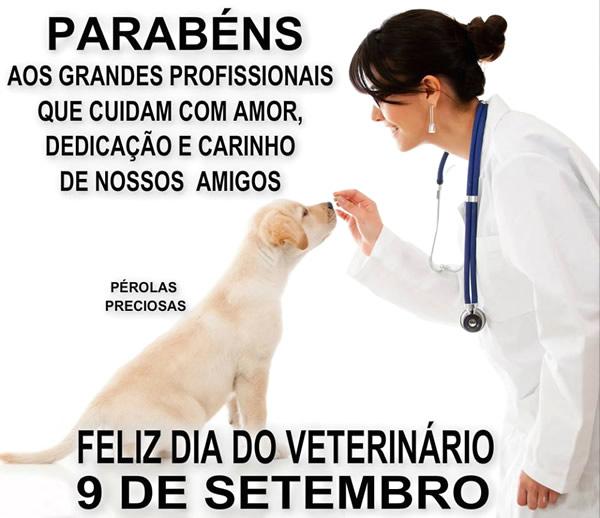 Dia do Veterinário imagem 8