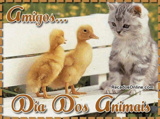 Amigos... Dia dos Animais