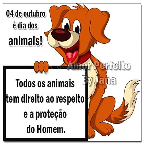 4 de Outubro é Dia dos Animais Todos os animais tem direito ao respeito e a proteção do Homem.
