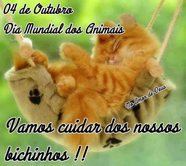 4 de Outubro - Dia dos Animais Vamos cuidar dos nossos bichinhos!!