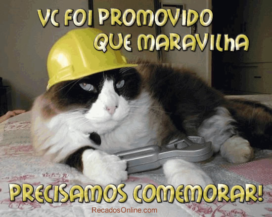 Promovido Imagem 3