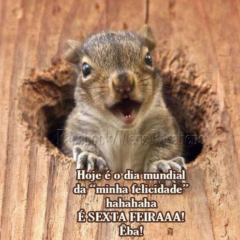 Hoje é o dia mundial da minha felicidade hahahaha. É Sexta-Feiraaaa!...
