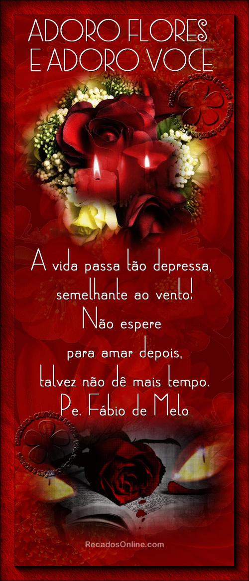Padre Fábio de Melo Imagem 1