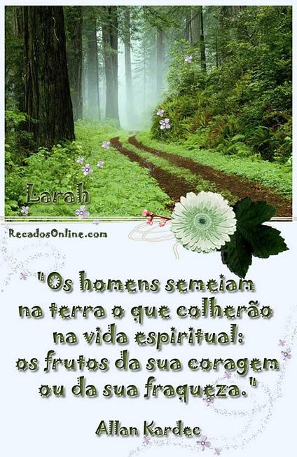 Os homens semeiam na terra o que colherão na vida espiritual: os frutos da sua coragem ou da sua fraqueza. Allan Kardec