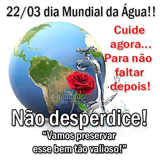 Dia Mundial da Água Imagem 4