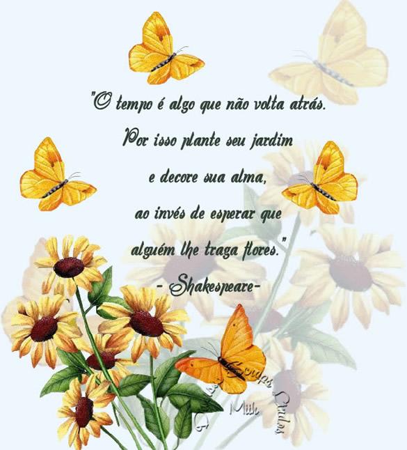 O tempo é algo que não volta atrás. Por isso plante seu jardim e decore sua alma, ao invés de esperar que alguém lhe traga flores. Shakespeare